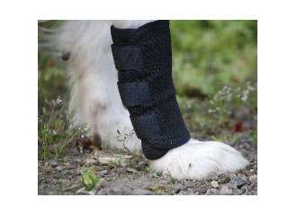 Back On Track Legwrap For Dogs Back On Track